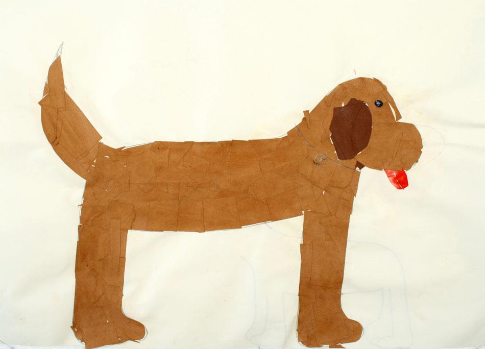 Hund von Aurora (8)