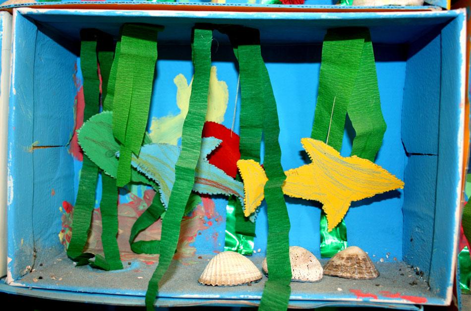 Aquarium von Helen (3)