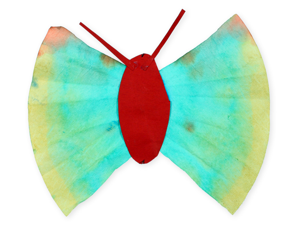 Schmetterling von Jame (8)
