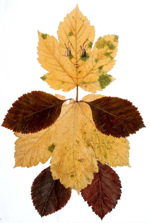 Blätterfigur von Roxana (8)