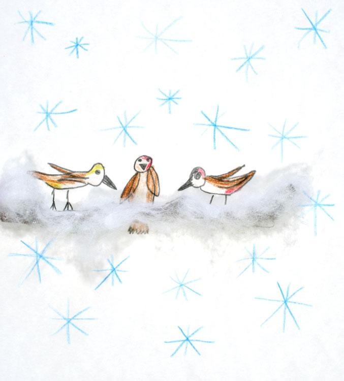Spatzen im Schnee von Tim (7)