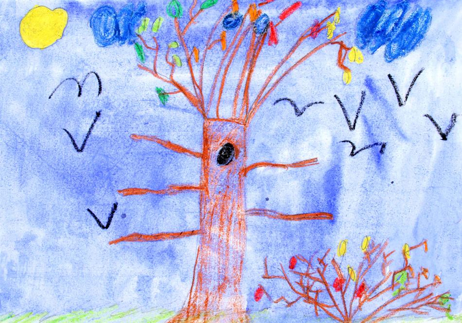 Bunt wird der Baum im Herbst von Max (9)