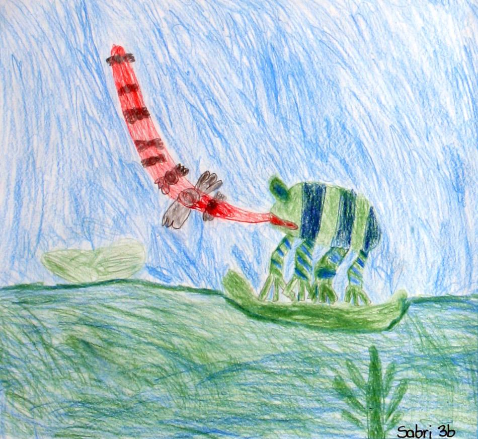 Frosch von Sabri (9)