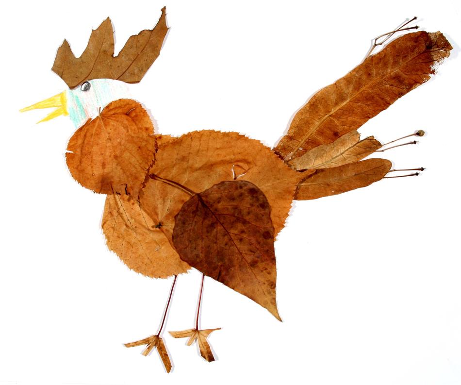 Vogel  von Kalvin (9)