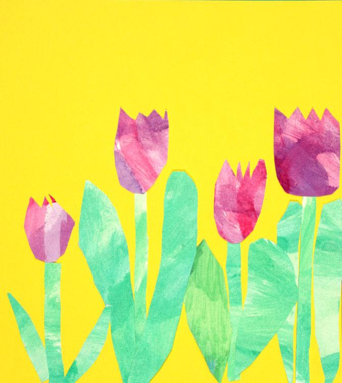 Tulpen von Romeo (8)