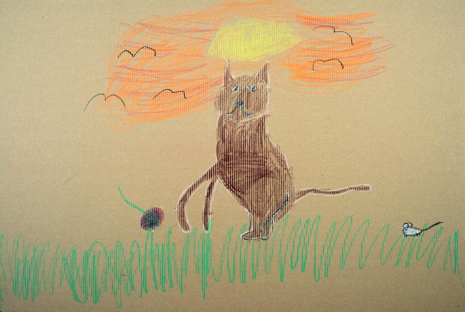 Katze in der Abendsonne von Chiara (6)