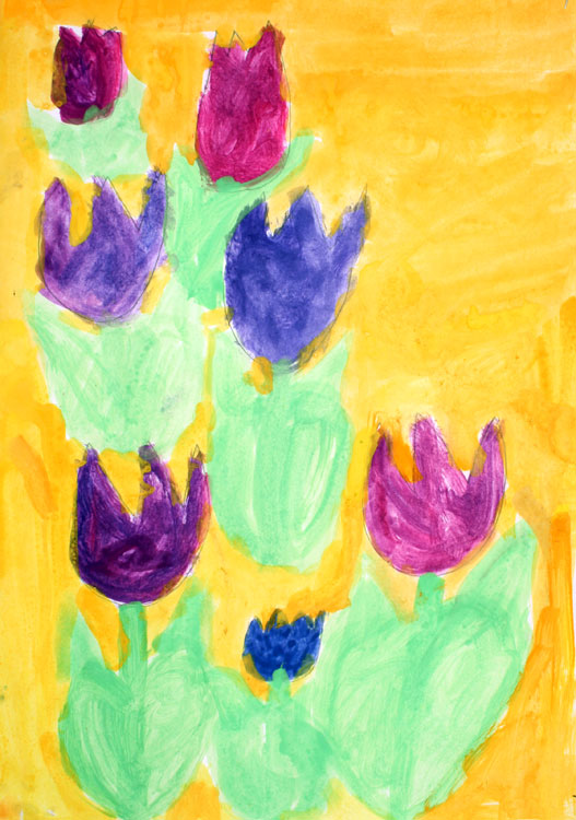 Tulpen von Pascal (8)