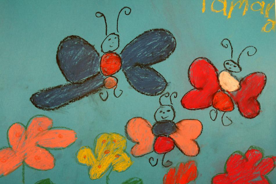 Schmetterlinge im Sonnenschein von Tamara (7)