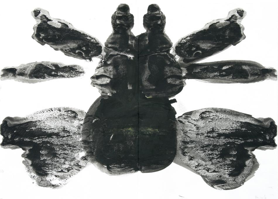 Käfer von Nailah (7)