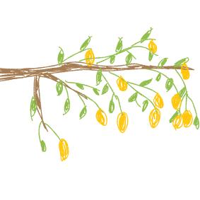 Kennst du das Land, wo die Zitronen blüh'n?