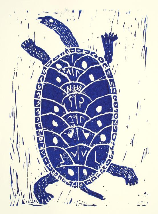 Schildkröte von Connor (11)