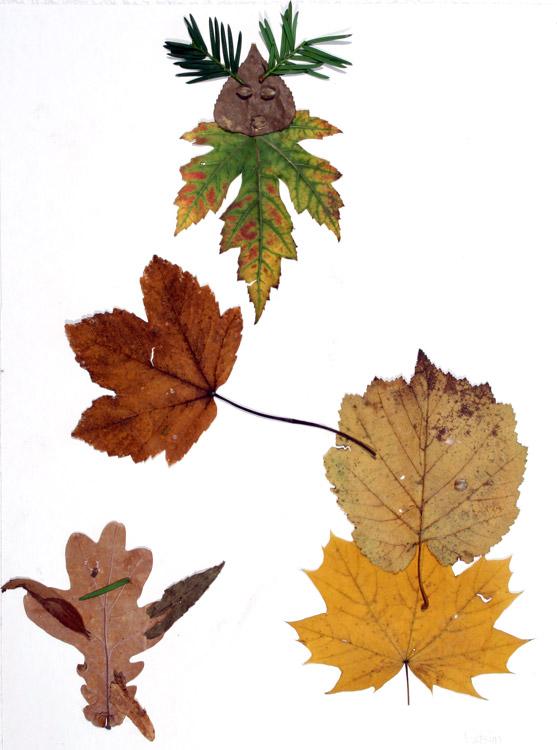 Blättergeist von Wasim (8)