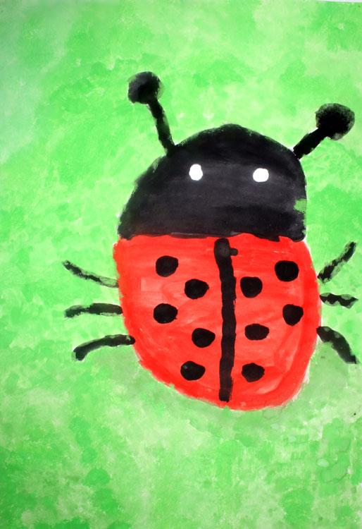 Käfer von Charlotte (7)