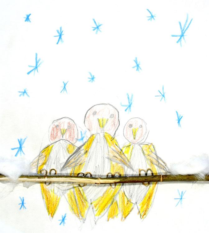 Spatzen im Schnee von Moritz (7)