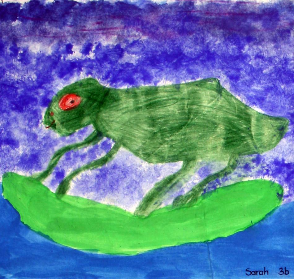 Frosch von Sarah (9)