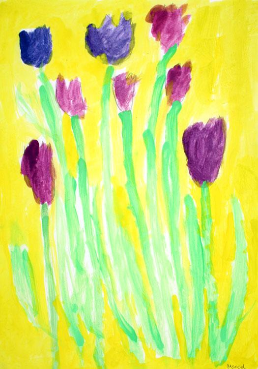 Tulpen von Marcel (8)