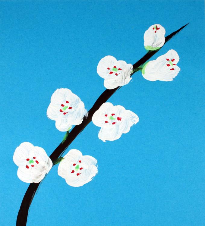 Kirschblüte von Samuel (8)