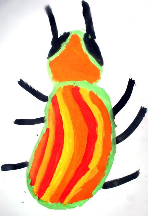 Käfer von Baris (7)