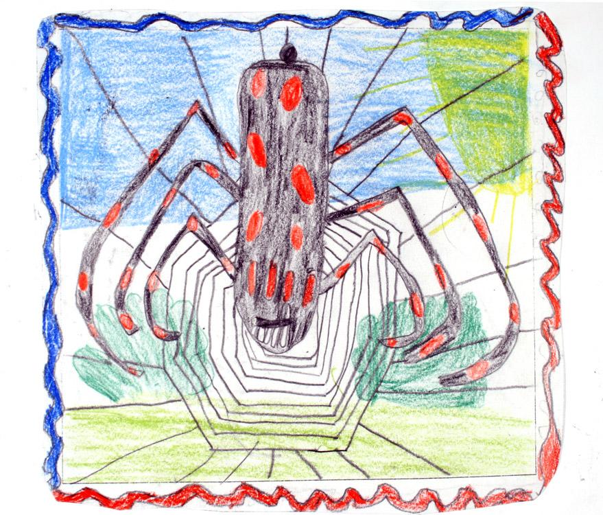 Spinne in ihrem Netz von Kevin (8)