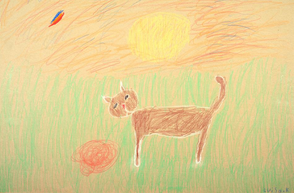 Katze in der Abendsonne von Luisa (7)