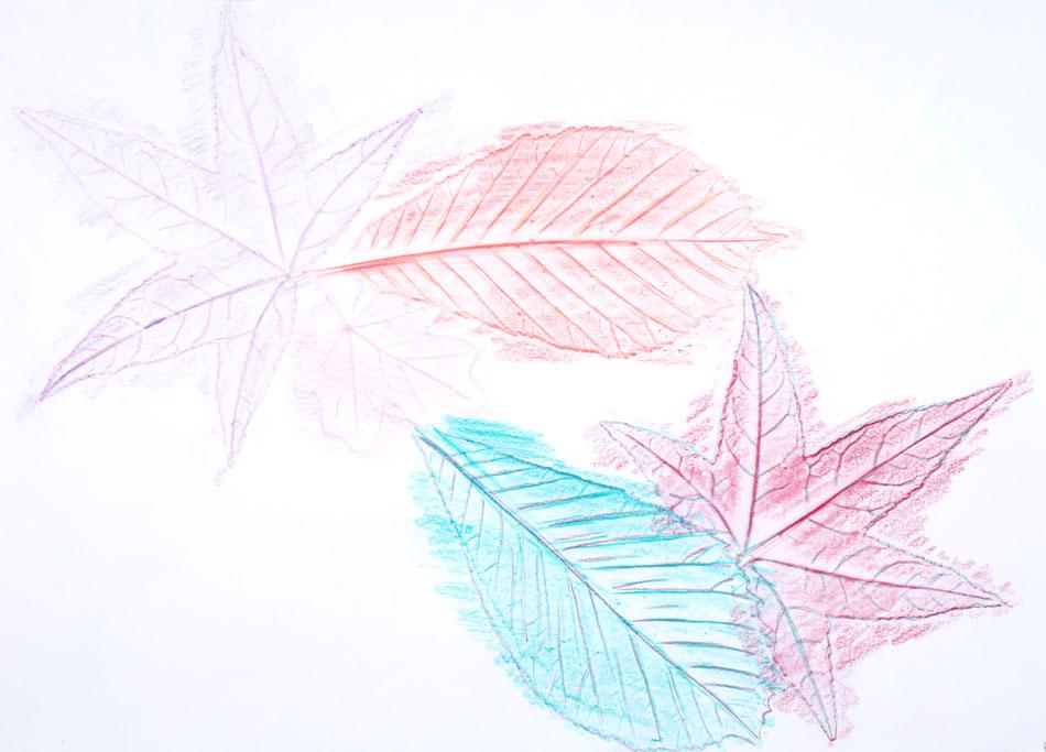 Blätter von Laura (7)