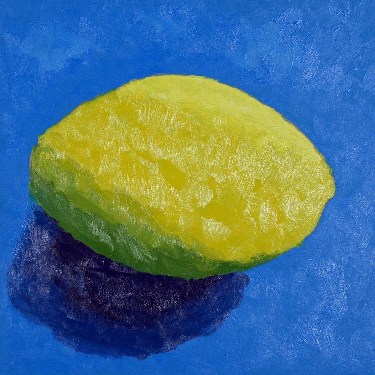 Zitrone von Miriam (14)