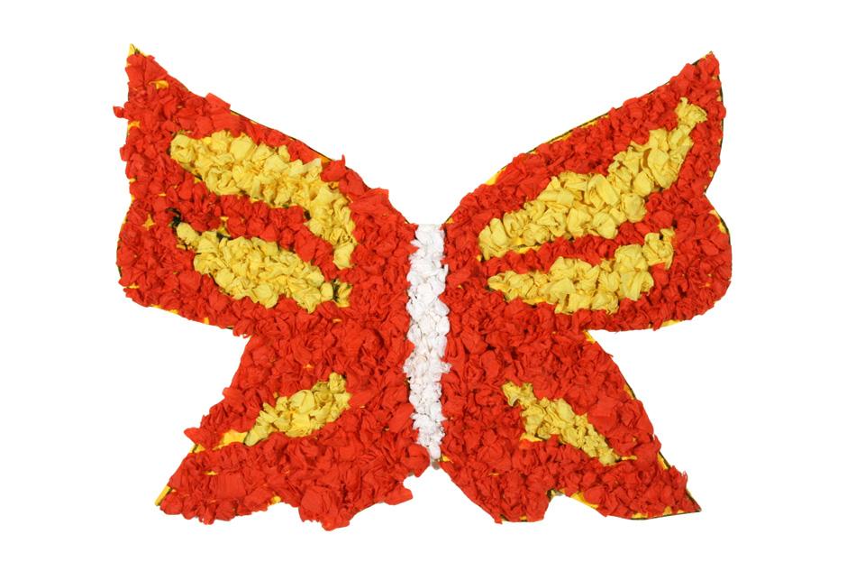Schmetterling von Vanessa (9)