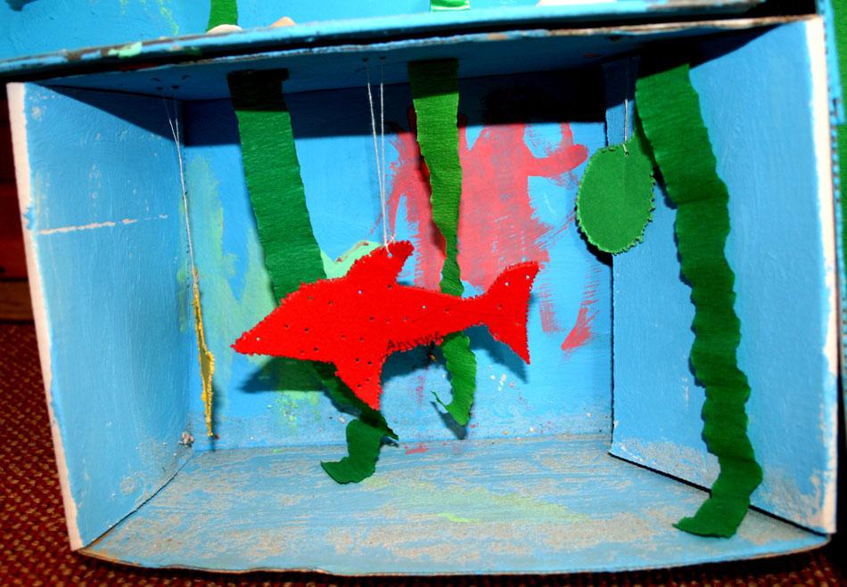 Aquarium von Annina (3)
