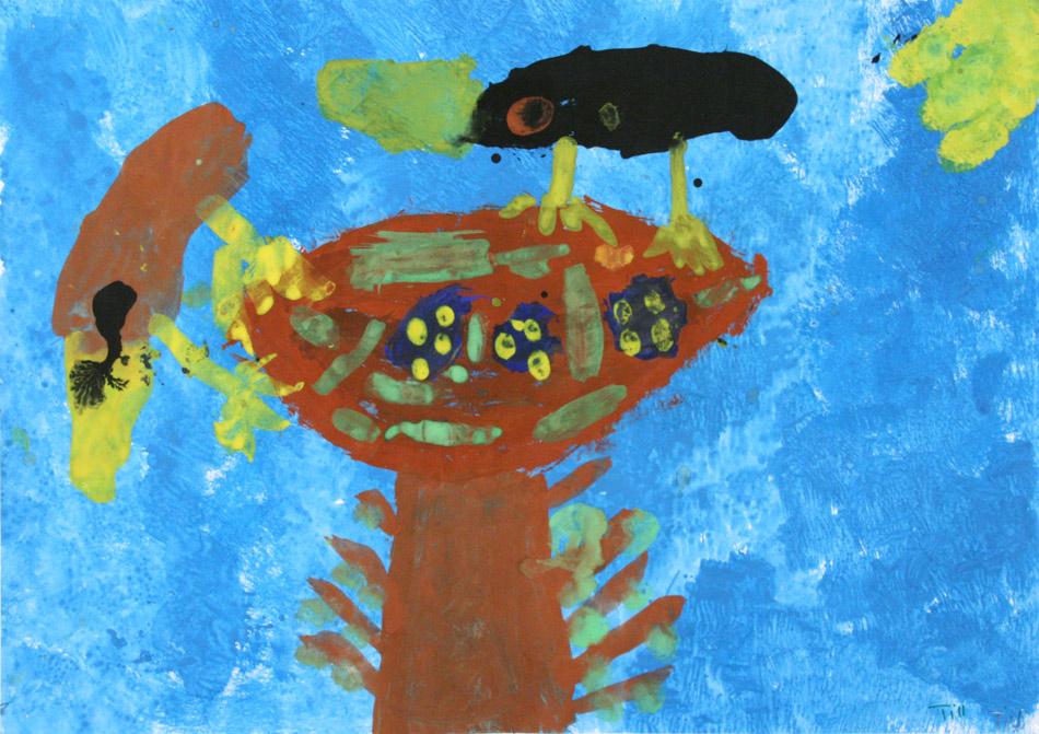 Vogelnest von Till (6)