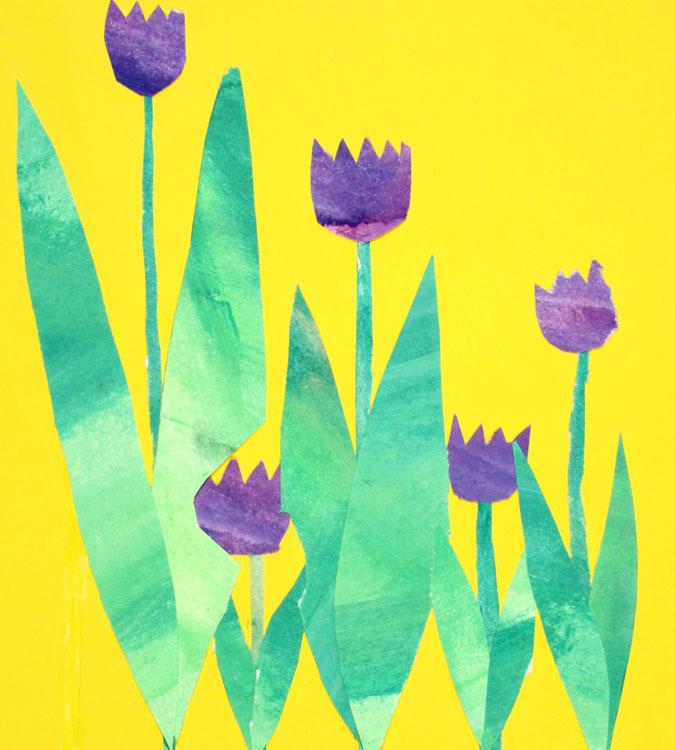 Tulpen von Moritz (8)