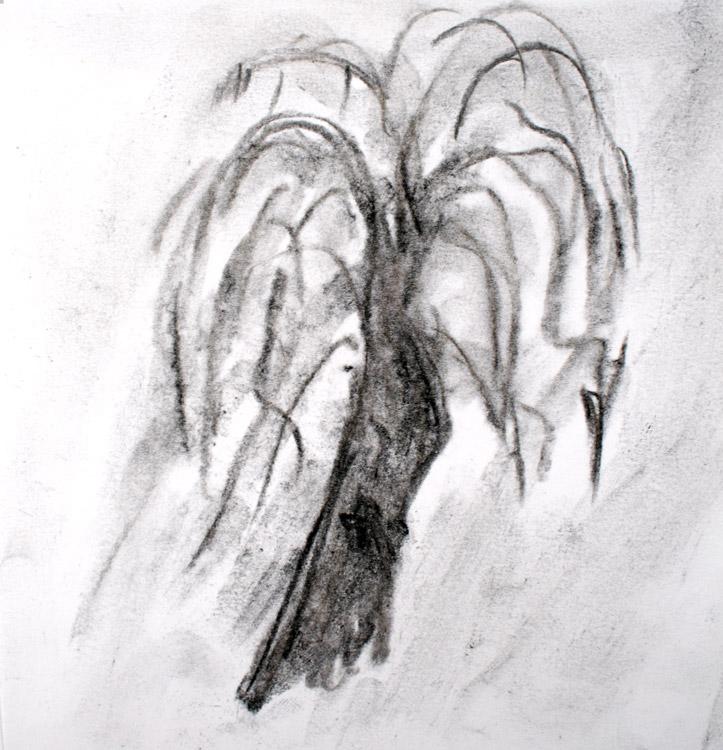 Baum von Emre (8)