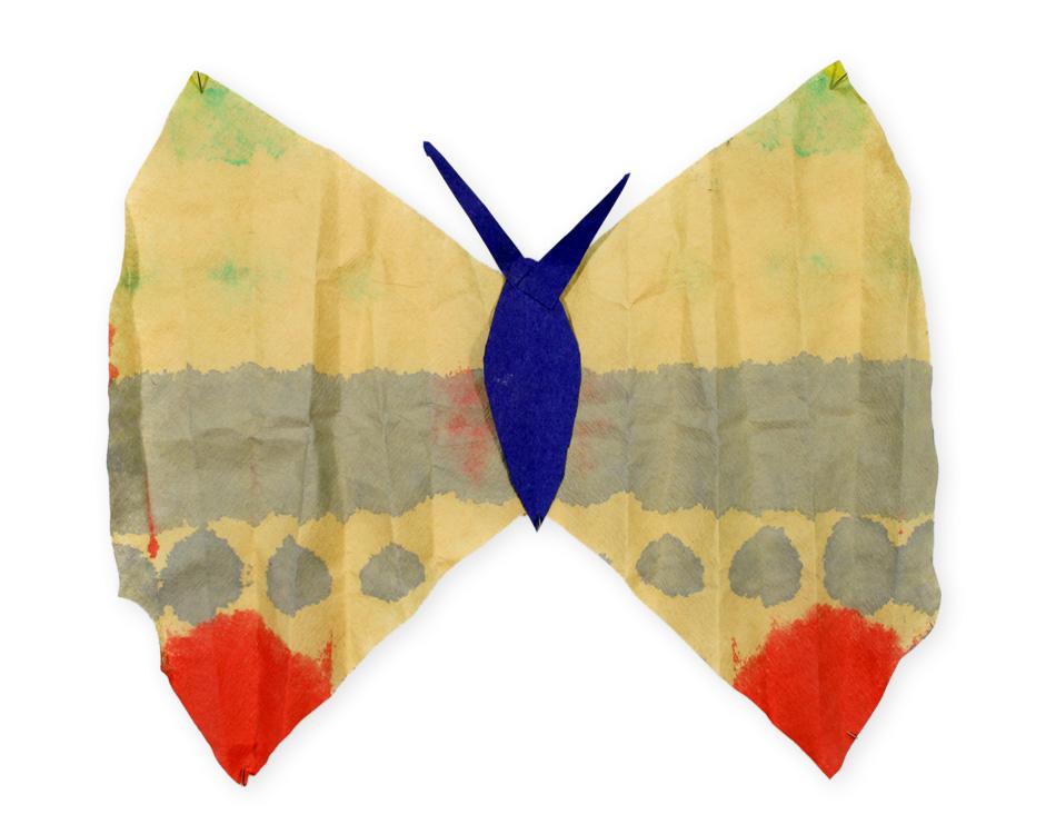 Schmetterling von Jersey (8)