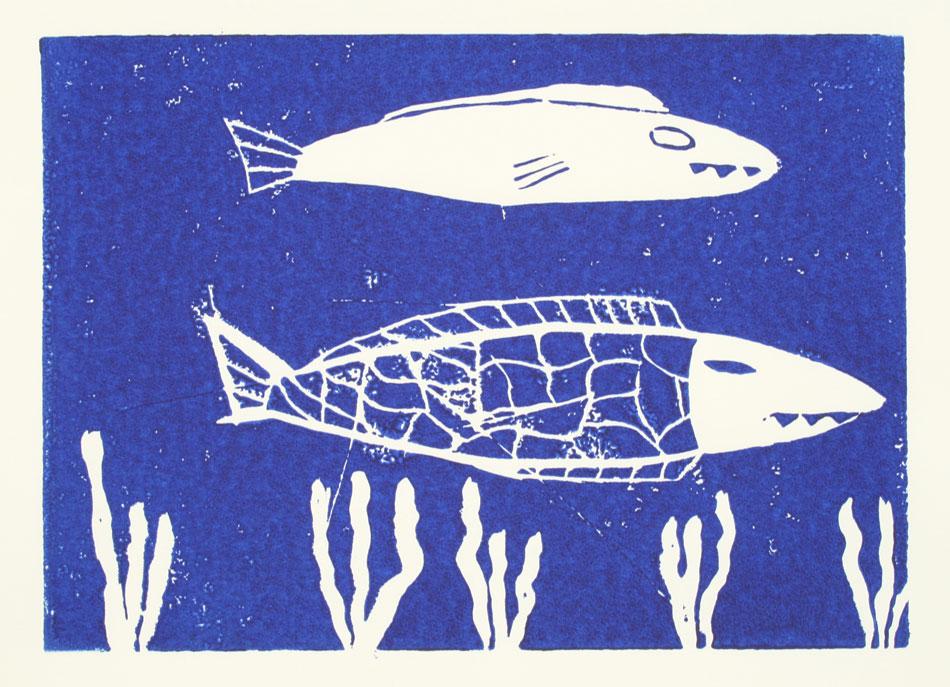 Fische von Leon (11)