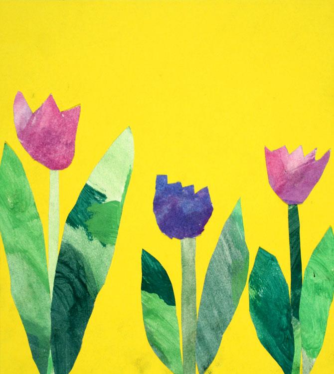 Tulpen von Phillip (8)