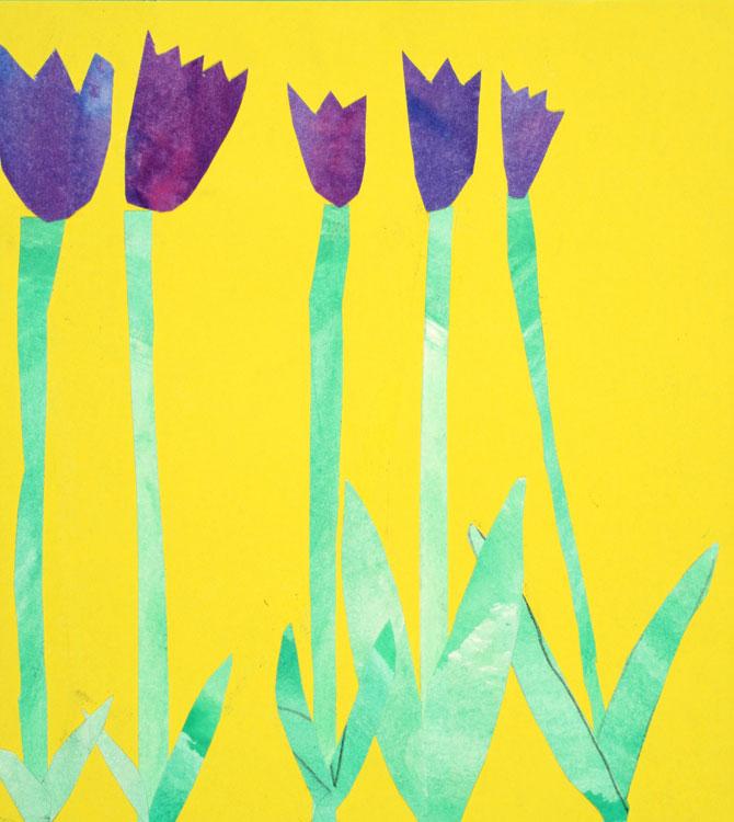 Tulpen von Oliver (8)