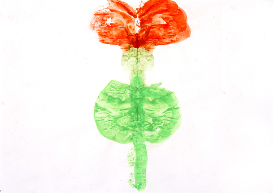 Blume  von Yusuf (7)