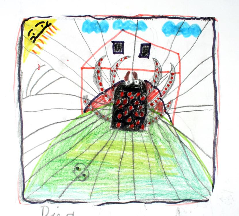 Spinne in ihrem Netz von Sam (8)
