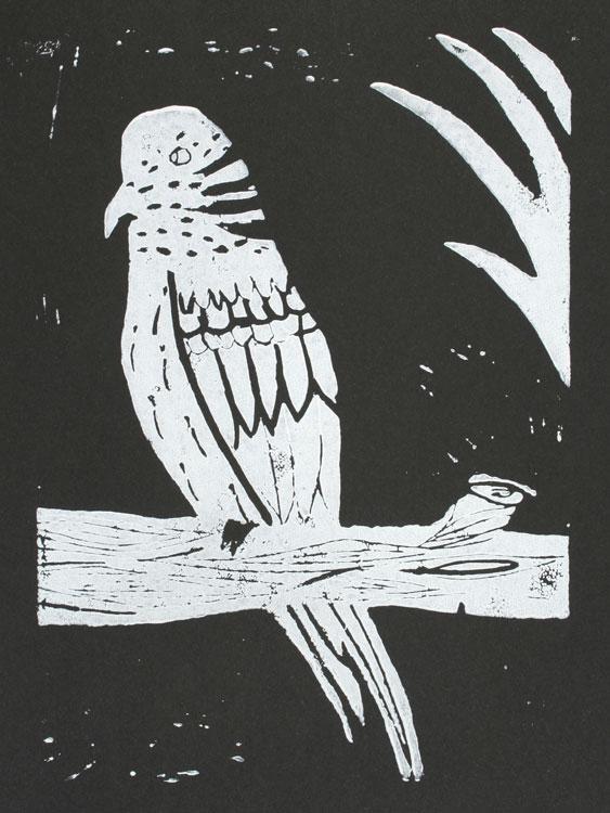 Papagei von Laura (11)