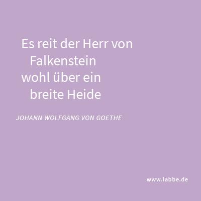Der Herr von Falkenstein